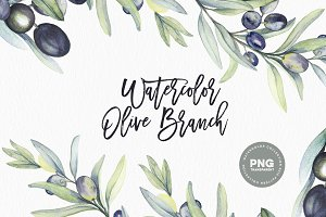 Watercolor botanic olive branch
