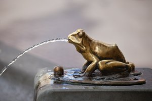 Gilded Frog Sculpture Pouring Water