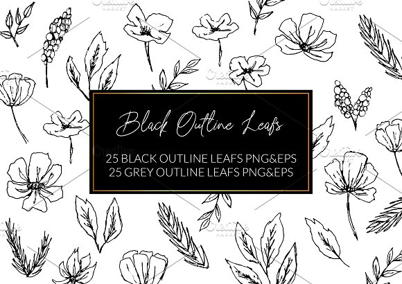 Black Outline Leafs and Flowers in Illustrations