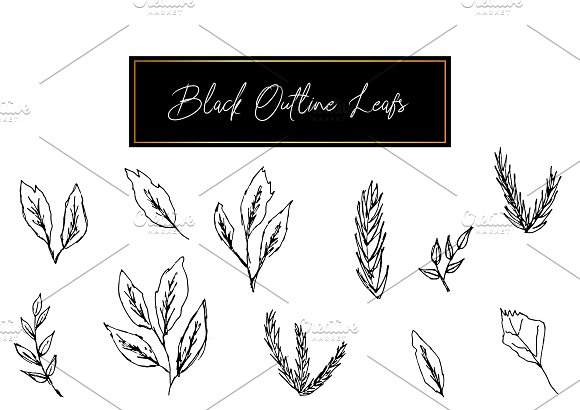 Black Outline Leafs and Flowers in Illustrations - product preview 1