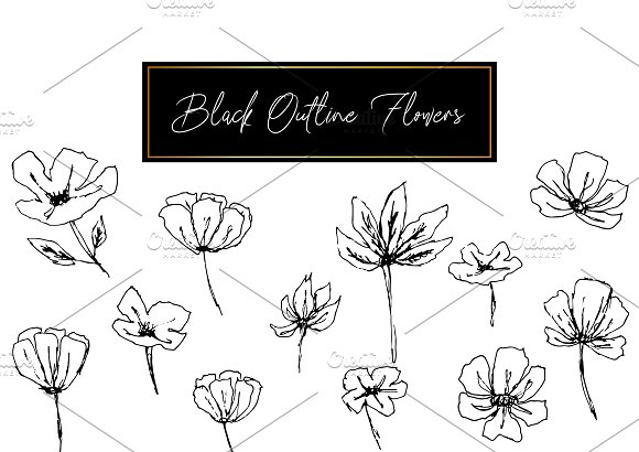 Black Outline Leafs and Flowers in Illustrations - product preview 2