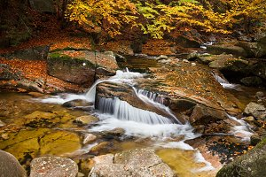 Autumn Stream With Small Waterfall