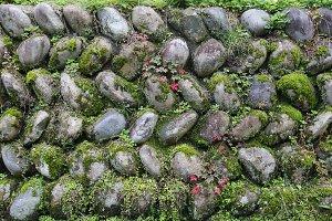 Stone green wall