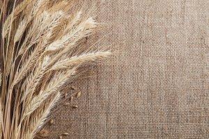 Wheat ears border on burlap