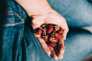 Handful of wild strawberries