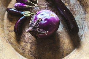 bowl of eggplant varieties