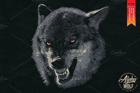 alpha wolf vector illustration illustrations creative market