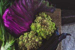 Radiant Bowl of Vegetables