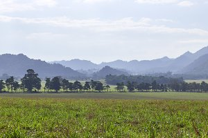 view of mountains jungle and field