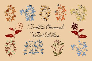 Azalleia Ornaments Vector Collection