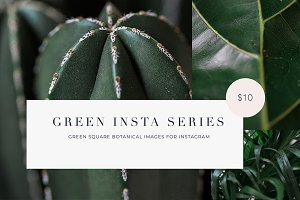 15 Green plant Insta Square photos