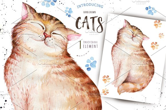 Watercolor cats collection in Illustrations - product preview 2