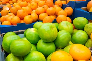 Green pamelos and oranges