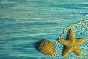 Seashell and starfish on blue board