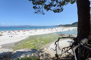 Islas Cies - Cies Islands