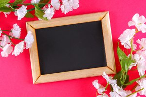 Chalkboard in a wooden frame with an empty box surrounded by white flowers on a pink background. Copy the space. Template for the spring holiday.