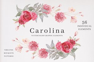 Watercolor Graphic Elements-Carolina