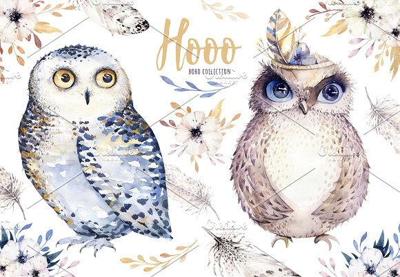 Watercolor cute owls in Illustrations