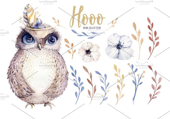 Watercolor cute owls in Illustrations - product preview 1