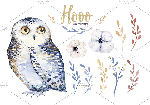 Watercolor cute owls in Illustrations - product preview 2