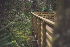 Florida Outdoor Boardwalk