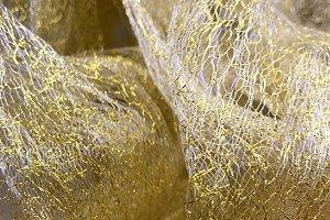 Golden Gossamer