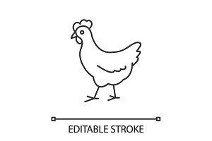 Chicken linear icon