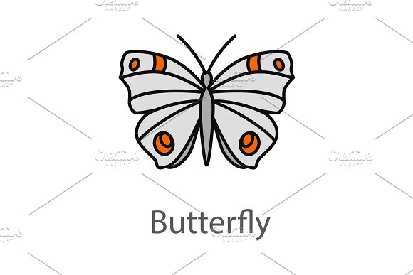 Butterfly color icon