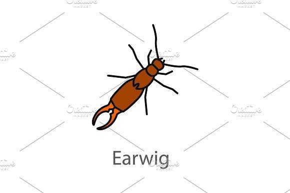 Earwig color icon