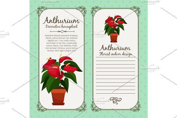 Vintage label with anthurium plant