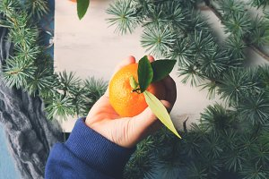 Fresh tangerine in a kid's hand