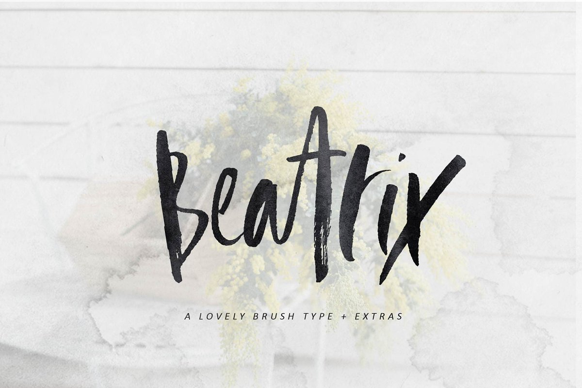 Beatrix Brush Font + Extras ~ Script Fonts ~ Creative Market