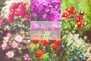 Photo bundle - Beautiful flowers