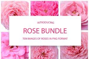 A set of clip art  - Pink Roses
