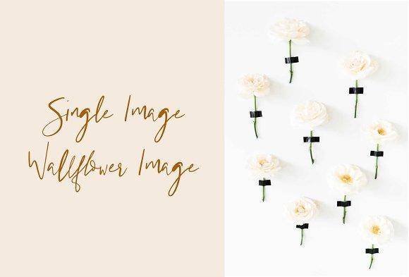 Wallflower Wedding Styled Stock