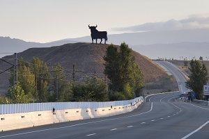 black bull along the Spane road