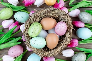 Nest surrounded with tulips and eggs