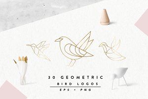 Geometric Bird Logos EPS & PNG