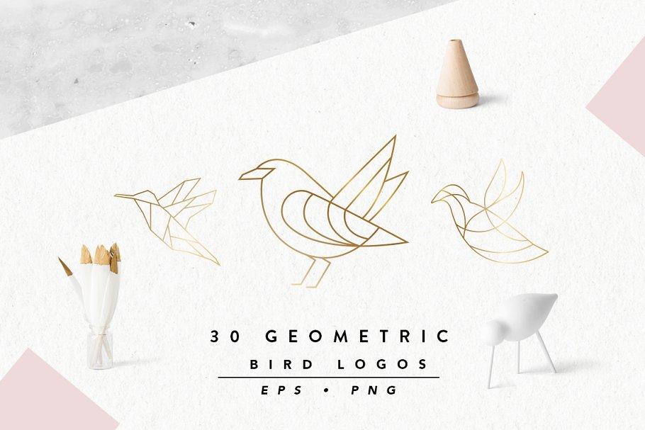 Geometric Bird Logos EPS & PNG