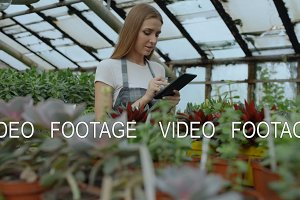 Dolly shot of Young woman working in garden center. Attractive girl check and count flowers using tablet computer during work in greenhouse