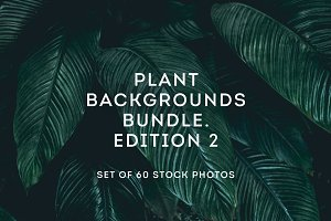 Plant backgrounds bundle 2