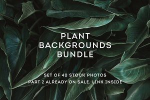 Plant backgrounds bundle