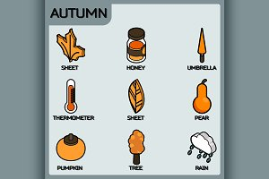 Autumn color outline isometric icons
