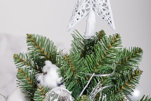 Christmas tree traditional