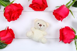 White teddy bear surrounded by pink roses on a white wooden table. Template for March 8, Mother's Day, Valentine's Day.