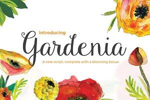 Gardenia Script + Blooming Bonus