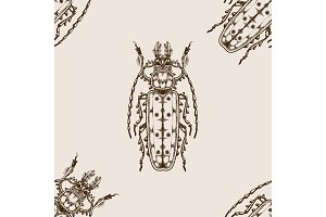 Bug seamless pattern vector illustration