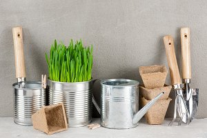 Garden tools and pot with grass