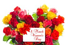 Roses. Happy Women's Day!