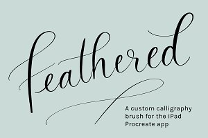 Procreate Brush | Feathered